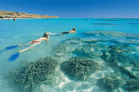 Ningaloo Reef Resort - Accommodation Rockhampton