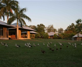 Feathers Sanctuary - Accommodation Rockhampton