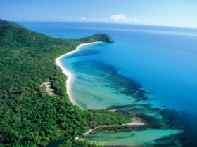 Cape Tribulation Camping - Accommodation Rockhampton