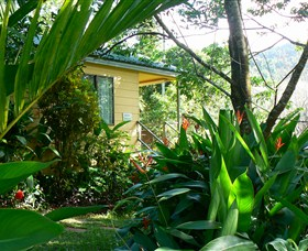 Daintree Valley Haven - Accommodation Rockhampton