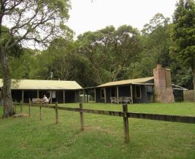 Tree Fern Lodge - Accommodation Rockhampton