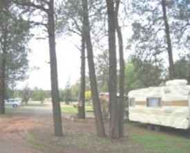 The Kelpie Caravan Park - Accommodation Rockhampton