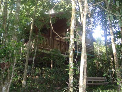 Adjinbilly Rainforest Retreat Cabins - Accommodation Rockhampton