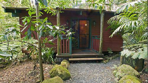 Springbrook Lyrebird Retreat - Accommodation Rockhampton