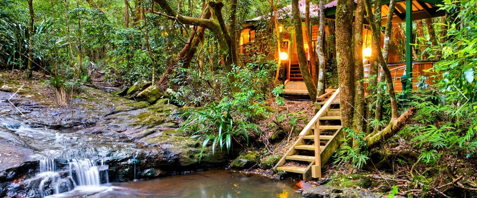 The Mouses House - Rainforest Retreat - Accommodation Rockhampton