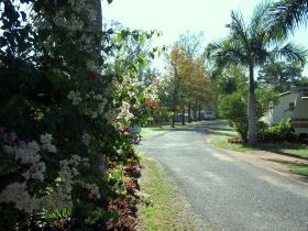 Riverview Caravan Park Gayndah - Accommodation Rockhampton