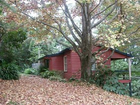 Turkeys Nest Rainforest Cottage - Accommodation Rockhampton