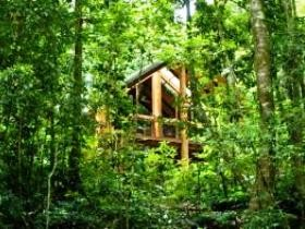 Fur'N'Feathers Rainforest Tree Houses