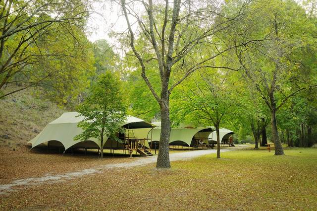 Buchan Caves Reserve - Accommodation Rockhampton