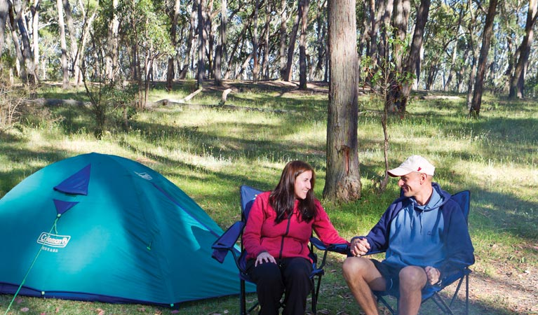 Apsley Falls campground - Accommodation Rockhampton
