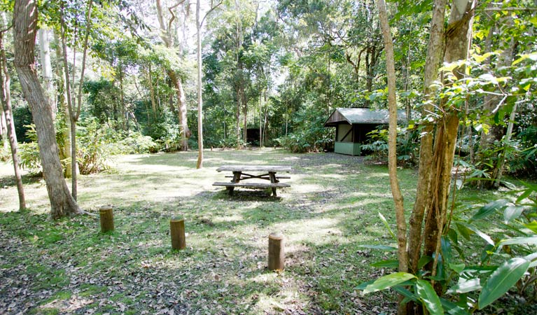 Iron Pot Creek campground - Accommodation Rockhampton