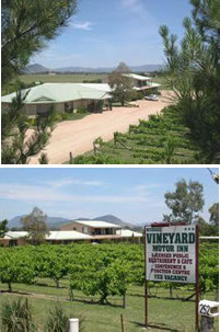 Mudgee Vineyard Motor Inn - Accommodation Rockhampton
