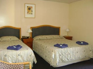 Mudgee Motor Inn - Accommodation Rockhampton