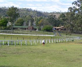 Kellarni Downs Farmstay-Scenic Rim - Accommodation Rockhampton