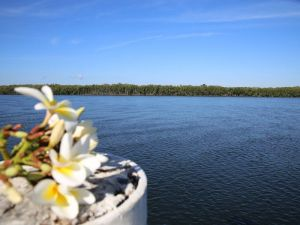The Fishing Haven Holiday Park - Accommodation Rockhampton