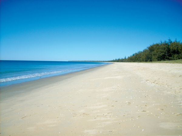 Woodgate Beach Tourist Park - Accommodation Rockhampton