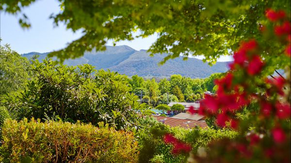Greatview Holiday Spa Retreat for Couples - Accommodation Rockhampton