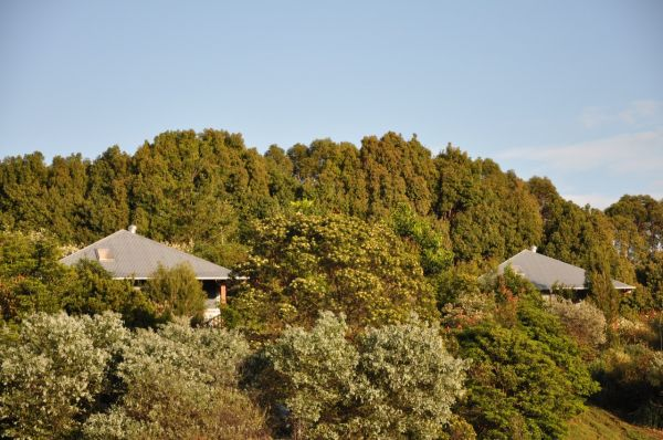Tallaringa Views - Accommodation Rockhampton
