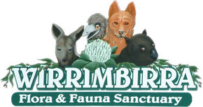 Wirrimbirra Sanctuary - Accommodation Rockhampton