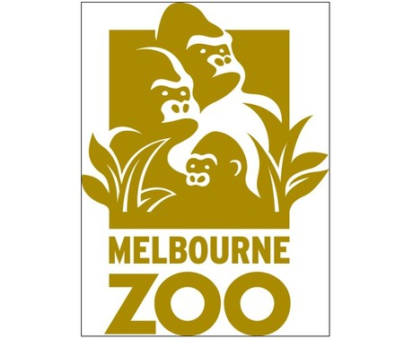 Melbourne Zoo - Accommodation Rockhampton