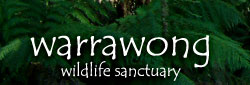 Warrawong Wildlife Park - Accommodation Rockhampton