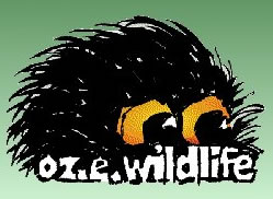 OZe Wildlife - Accommodation Rockhampton