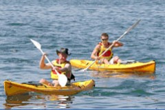 Manly Kayaks - Accommodation Rockhampton