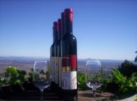 Mount Tamborine Winery & Homestead - Accommodation Rockhampton