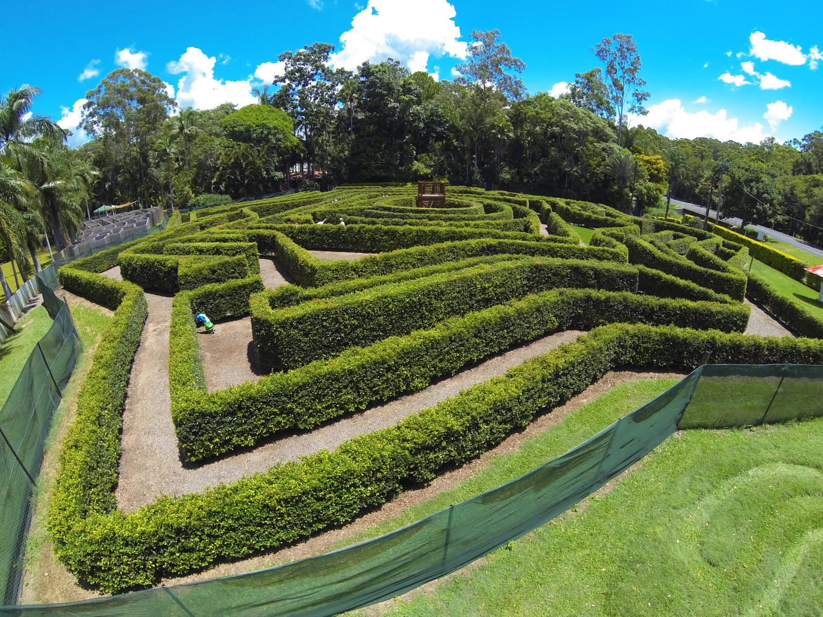 Bellingham Maze - Accommodation Rockhampton