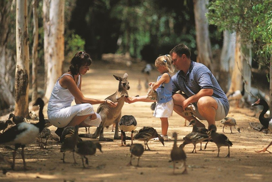 Billabong Sanctuary - Accommodation Rockhampton
