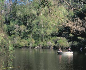 Warren National Park - Accommodation Rockhampton