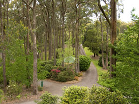 Mount Lofty Botanic Garden - Accommodation Rockhampton