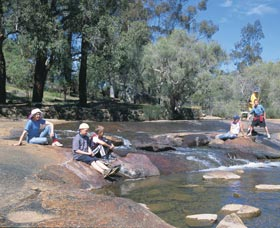 John Forrest National Park - Accommodation Rockhampton