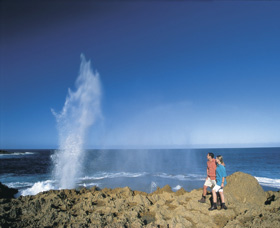 The Blowholes Carnarvon - Accommodation Rockhampton