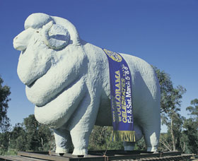 Giant Ram Tourist Park - Accommodation Rockhampton