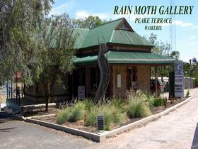Rain Moth Gallery - Accommodation Rockhampton