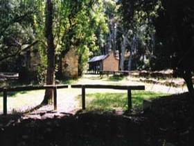 Wirrabara Forest Reserve - Accommodation Rockhampton