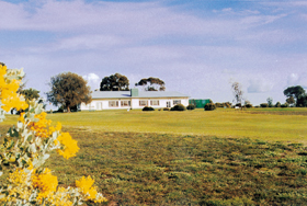 Lucindale Country Club - Accommodation Rockhampton