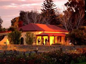 Elderton Wines - Accommodation Rockhampton