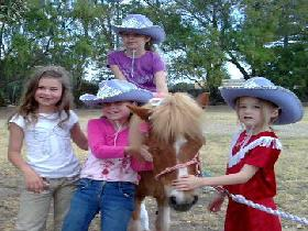 Amberainbow Pony Rides - Accommodation Rockhampton