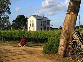 Highbank Vineyards - Accommodation Rockhampton