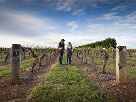 Coonawarra Wineries Walking Trail - Accommodation Rockhampton