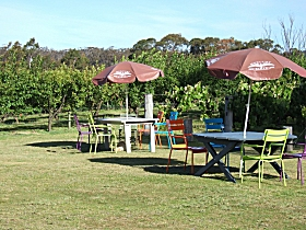 Cerise Brook Orchard  Family Golf - Accommodation Rockhampton