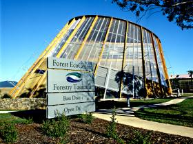 Forest EcoCentre - Accommodation Rockhampton