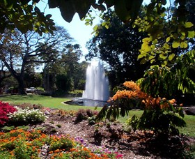 George Brown Darwin Botanic Gardens - Accommodation Rockhampton