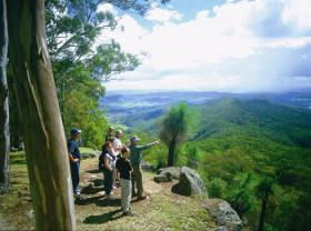 Gold Coast Hinterland Great Walk - Accommodation Rockhampton