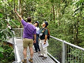 Daintree Discovery Centre - Accommodation Rockhampton