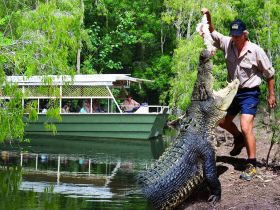 Hartleys Crocodile Adventures - Accommodation Rockhampton