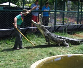 Snakes Downunder Reptile Park and Zoo - Accommodation Rockhampton