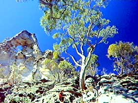 Mount Moffatt Section - Carnarvon National Park - Accommodation Rockhampton